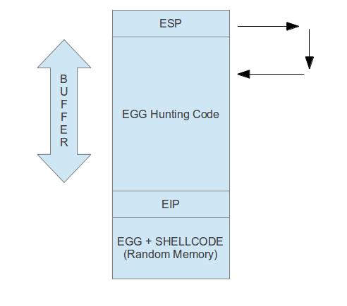 Hunting the Egg: Egg Hunter |